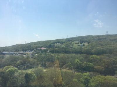 観覧車からの景色