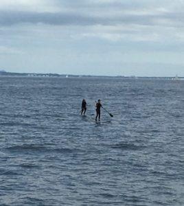 パドルサーフィンをしている人